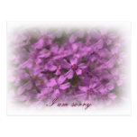 I am sorry - Dreamy pink flowers Postcard
