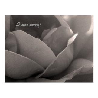 I am sorry! postcard