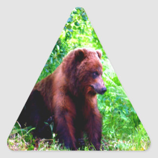 I am strong but i am soft and kind grizzly Alask Triangle Sticker