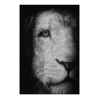 I am the king! posters