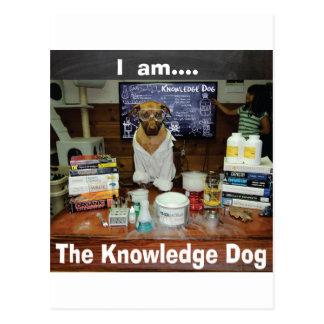 I am The Knowledge Dog genuine original Postcard