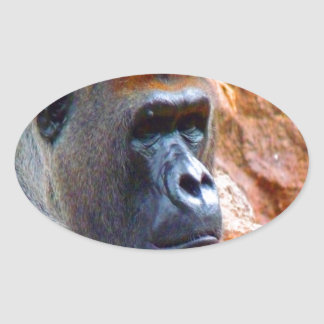 I am the right one gorilla male endangered species oval sticker