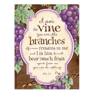 I Am the Vine Scripture Postcard