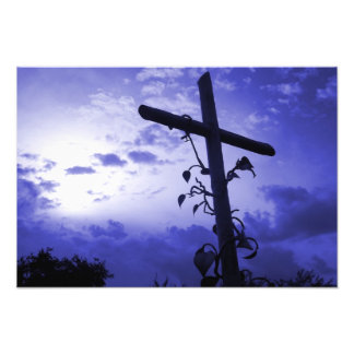 I am the vine you are the branches cross of Jesus Photo Print