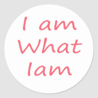 I am What I am! Cool humor gifts! Classic Round Sticker