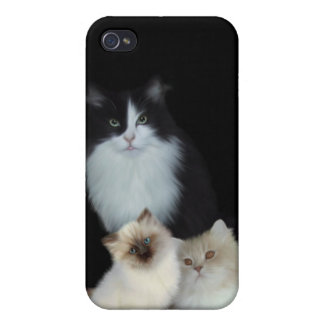 i Animal Three Cats iPhone 4 Cover