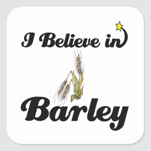 i believe in barley square stickers