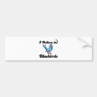 i believe in bluebirds bumper sticker