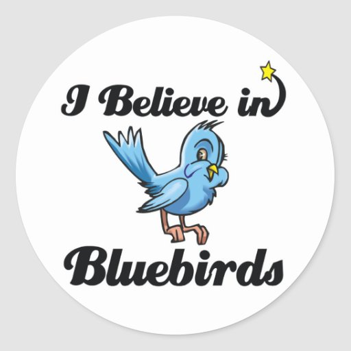 i believe in bluebirds classic round sticker