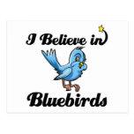 i believe in bluebirds postcard