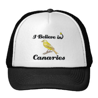 i believe in canaries hats