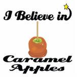 i believe in caramel apples photo sculptures