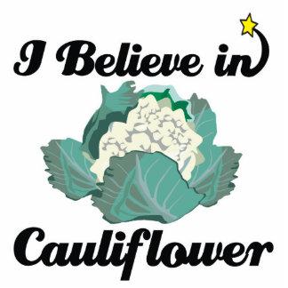 i believe in cauliflower standing photo sculpture