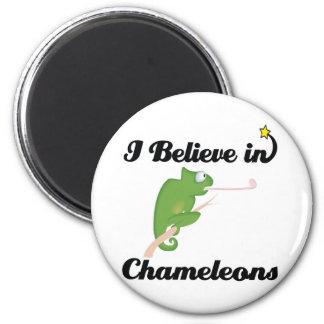 i believe in chameleons magnet
