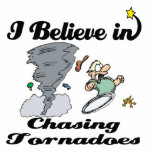 i believe in chasing tornadoes photo sculpture