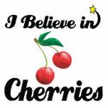 i believe in cherries photo sculpture