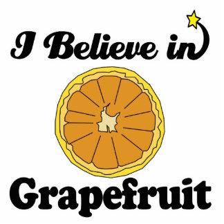 i believe in grapefruit standing photo sculpture