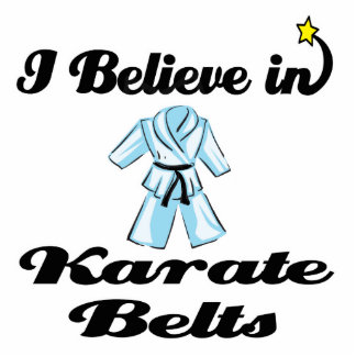 i believe in karate belts standing photo sculpture
