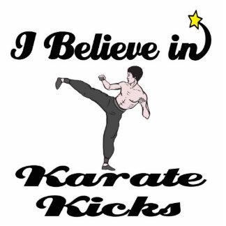 i believe in karate kicks standing photo sculpture