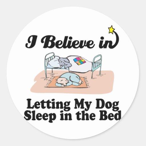 i believe in letting dog sleep in bed sticker