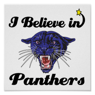 i believe in panthers poster