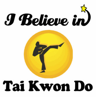 i believe in tai kwon do standing photo sculpture