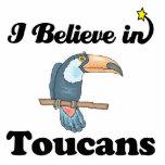 i believe in toucans photo sculptures