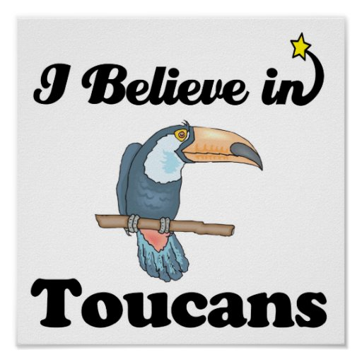 i believe in toucans poster