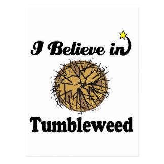 i believe in tumbleweed post card