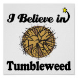 i believe in tumbleweed poster