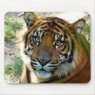 I Believe_ Mousepad_by Elenne Boothe Mousepad