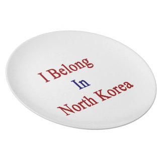 I Belong In North Korea Dinner Plates