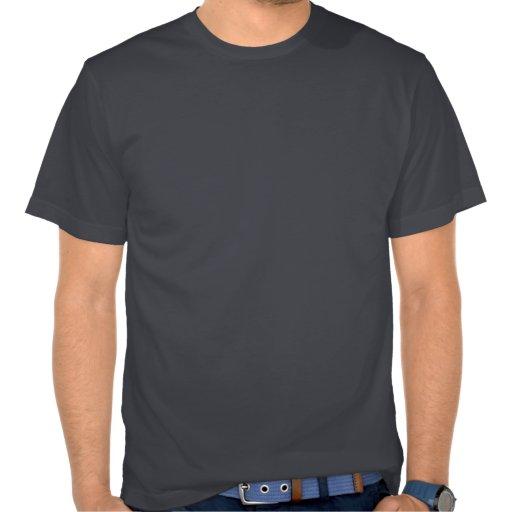 I bigote usted una fuente de la aguamarina de la p camisetas