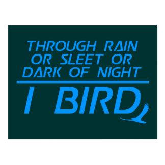 I Bird Postcard