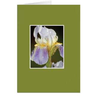 I Blossom with You Greeting Card