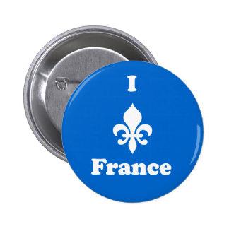 I botón de Francia de la flor de lis Pin