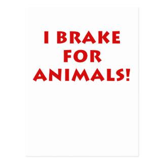 I Brake for Animals Postcard