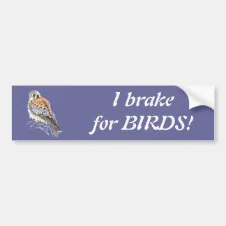 I brake for Birds - Birding Kestrel Watercolor Car Bumper Sticker