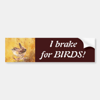I brake for Birds - Birding with Cute Wren Art Bumper Sticker