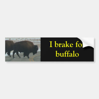 I brake for buffalo bumper sticker