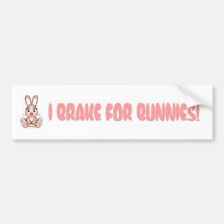 I BRAKE FOR BUNNIES BUMPER STICKERS