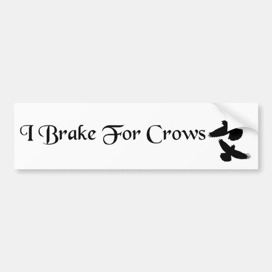 I Brake For Crows Bumper Sticker