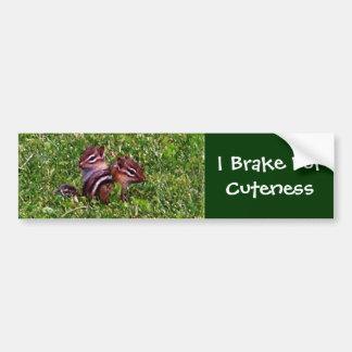 I Brake For Cuteness Chipmunks Bumper Sticker Car Bumper Sticker