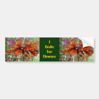 I Brake For Flowers Daisy Bumper Sticker