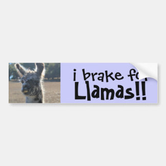 i brake for Llamas! cute Bumper Sticker