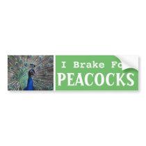 I Brake For PEACOCKS Bumper Sticker