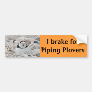 I brake for Piping Plovers Bumper Sticker