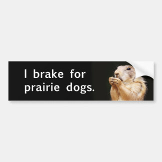 I brake for prairie dogs. car bumper sticker