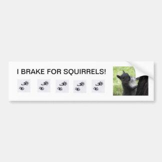 I BRAKE for Squirrels, bumper sticker. Bumper Sticker