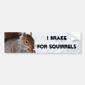 I Brake for Squirrels bumper sticker Car Bumper Sticker